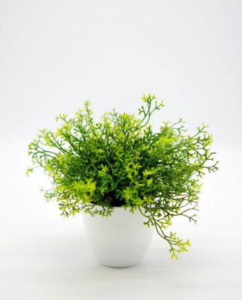 Artificial Green Plant in Pot Height 25 cm