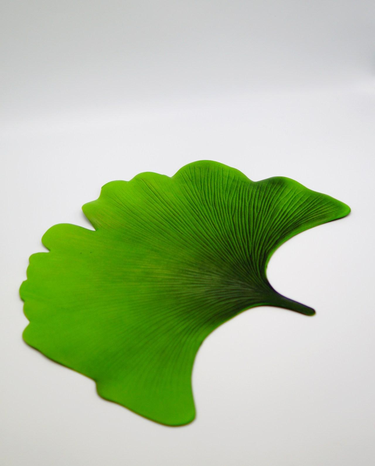 Decorative Placemat Lotus Leaf